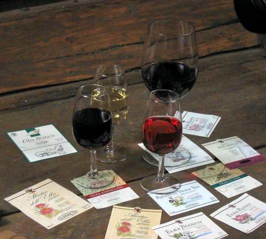 vino e etichette